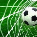 У рамках гранту від Житомирської ОДА відбудеться Всеукраїнський турнір з футболу «FENIKS CUP 2019»