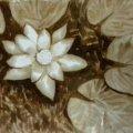 У Житомирі відбудеться майстер-клас з малювання кавою