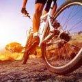 В Житомирській області велосипедист потрапив під колеса іномарки