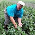 Квасоля замість керма: під Житомиром колишній водій вирощує органічні продукти