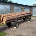 В Олевському лісгоспі від лісопорушників постраждав заповідний ліс