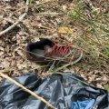 В лісосмузі на Київщині виявили спалене тіло будівельника з Житомирської області. ФОТО