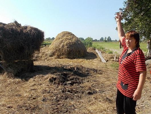 В селе Кишин Олевского района неизвестный сжигает запасы сена у селян