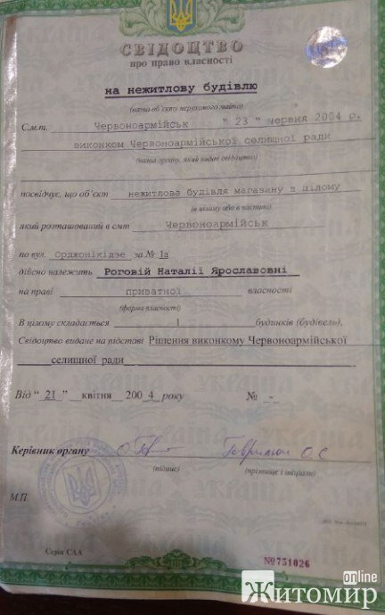 """Не життя, а виживання: На житомирянку """"повісили"""" кредитів на мільйон гривень"""