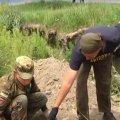 Под Житомиром поисковики продолжают находить останки жертв большевиков