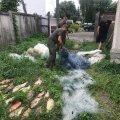 На Житомирщині браконьєр наловив рибки майже на 7 тисяч гривень