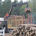 В Баранівському лісгоспі вкладають кошти в розвиток виробництва
