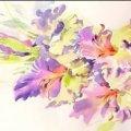 """У Житомирі відбудеться майстер-клас з акварельного живопису """"Квітковий настрій"""""""
