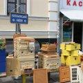 На Михайлівській відкрився обласний ярмарок меду. ФОТО