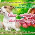 На Михайлівській відбудеться благодійна акція на підтримку безпритульних тварин
