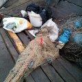 За дві доби рибоохоронним патрулем Житомирщини викрито 10 порушень правил рибальства