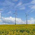 На Житомирщині побудують два вітропарки