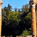 Івницький парк, що на Житомирщині – парк-пам'ятка садово-паркового мистецтва загальнодержавного значення та налічує близько 45 видів дерев. ФОТО