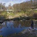 Парк культури та відпочинку імені М. Островського - головна визначна пам'ятка міста Коростень.ФОТО