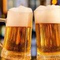 На фестивалі в Житомирі збираються встановити пивний рекорд