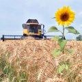 За 7 місяців заробітна плата у сільському господарстві в країні зросла майже на 24%
