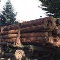 В Олевському районі поліцейські затримали трактор з краденим лісом