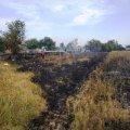 Житомирська область: упродовж доби ліквідовано 21 загоряння сухотрав'я, внаслідок чого вогнем пройдено 44 га території