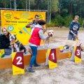 На вихідних у Житомирі відбувся перший забіг із песиками «Біжу з другом». ФОТО