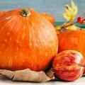 Для здоров'я та довголіття: дієтологиня розповіла кому варто їсти гарбуз
