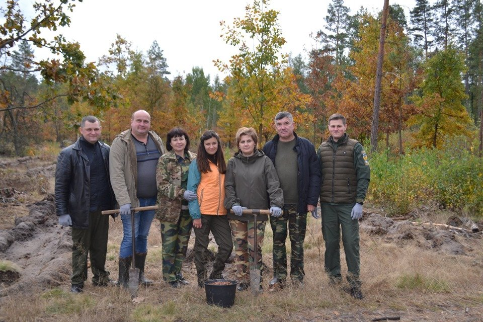 Житомирські лісівники садять ліс