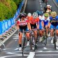 На Житомирщині відбудуться змагання з велоспорту на шосе