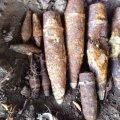 У Любарському районі грибники знайшли артснаряди
