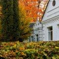 Яскраві світлини осіннього Новограда. ФОТО