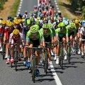 Житомирщина прийматиме учасників велогонки «Gran Fondo Zhytomyr Gold Race»