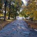 Осінні вулички Житомира в погожі теплі дні. ФОТО