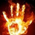 На території Житомирської області високий рівень пожежної небезпеки