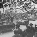 Перша світова війна: 10 фактів, про які ви не знали
