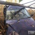 У Баранівському районі іномарка потрапила у кювет та зіткнулася з деревом