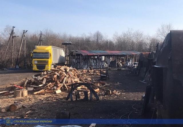 Мешканці Новоград-Волинського розкрадали та нелегально експортували деревину. ФОТО