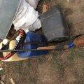 Полювання на Житомирщині проводяться з порушеннями