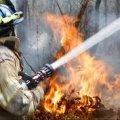 Малинський район: вогнеборцями ліквідовано пожежу в приватній оселі