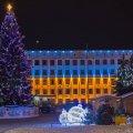 На новорічні та різдвяні свята майдан Корольова у Житомирі прикрашатиме блакитна ялинка, яка росла біля ліцею