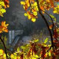 Погода на вихідних у Житомирі