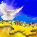 У Житомирі пройде мітинг до Дня Гідності та Свободи