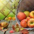 Свято 28 листопада: що категорично не можна робити в цей день