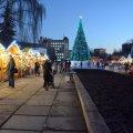 У Житомирі буде безалкогольний Різдвяний ярмарок, але з продажем столових вин