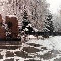 Ліквідатори хочуть, щоб у Житомирі на Покровській біля знаку «Чорний біль» встановили лавку