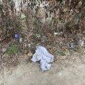 Сміття у дворі колишньої вечірньої школи на Кочерги у Житомирі.ФОТО