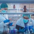 Названы дешевые таблетки, которые помогают бороться с онкологическими новообразованиями