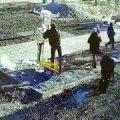 В Житомире неадекват побил на детской площадке девушку с ребенком на руках. ВИДЕО