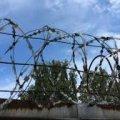 На Житомирщині затримано одного засудженого, який втік із виправної колонії