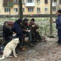 Верховна Рада ухвалила закон про захист безпритульних людей: одним з ініціаторів законопроєкту був колишній нардеп від Житомира