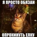Зеленский - как кот, который катается на гирляндах новогодней елки
