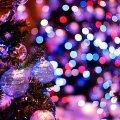 На Михайлівській на житомирян чекає новорічна феєрія