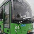 У новорічну ніч в Житомирі продовжать рух комунальних автобусів